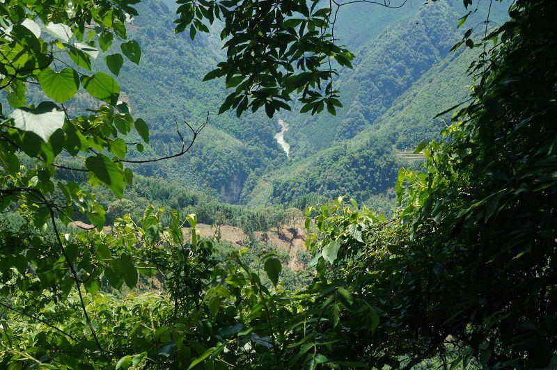 打通此路,能形成沐川,马边,峨边三县交通圈,为两个彝族县和一个国家